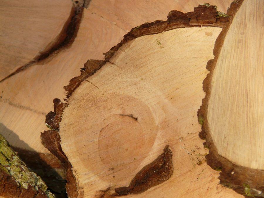 software cnc lavorazione del legno